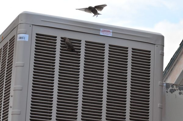How to Install a Swamp Cooler on a Roof